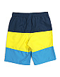 Big Boys Stripe Swim Shorts