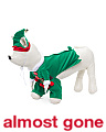 Elf With Legs Dog Costume