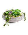 Lux Succulent Arrangement With Amethyst