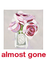 16x16 Elegant Rose Canvas Wall Art