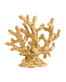 Decorative Coral Art