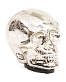 6in Led Glass Skull