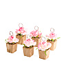 Set Of 6 Floral Table Card Holders
