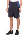Mesh Panel Training Shorts