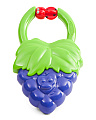 Baby Vibrating Fruit Teether