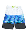 Big Boys Shark Swim Trunks