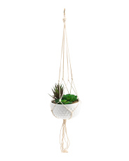 Hanging Ceramic Succulents