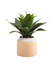 14in Faux Aloe In Wooden Print Pot