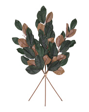 Set Of 3 Magnolia Leaf Stems