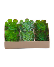 Set Of 6 Faux Succulent Napkin Rings