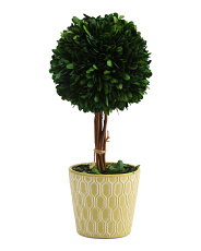 14in Faux Boxwood Topiary