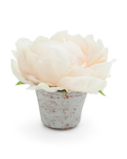 5.5in  Peony Name Card Holder