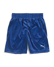 Little Boys Heather Printed Performance Shorts