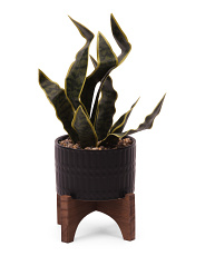 15.5in Snake Plant In Ceramic Planter On Stand