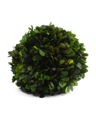 8in Boxwood Kissing Ball