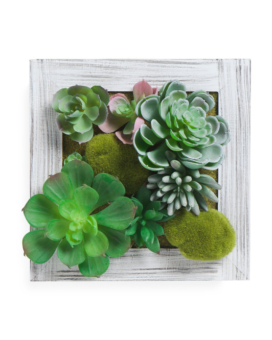 Succulent Filled Picture Frame