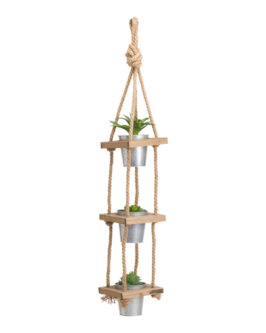 Set Of 3 Hanging Succulents
