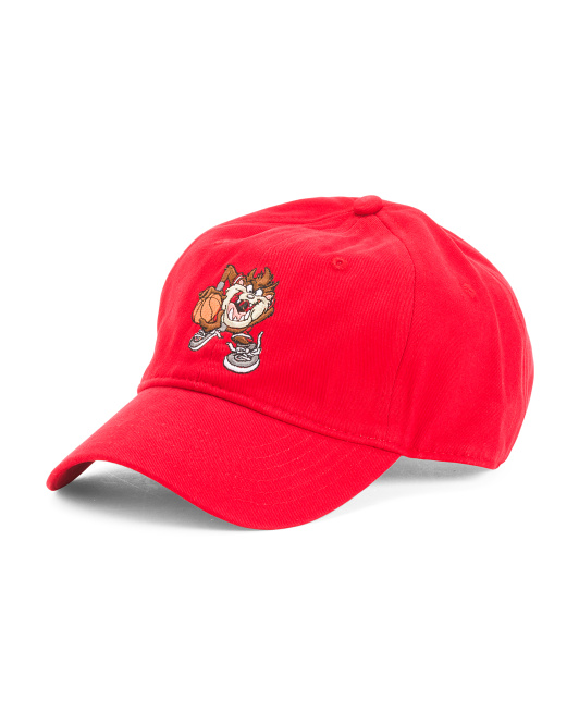 Taz Embroidered Dad Cap