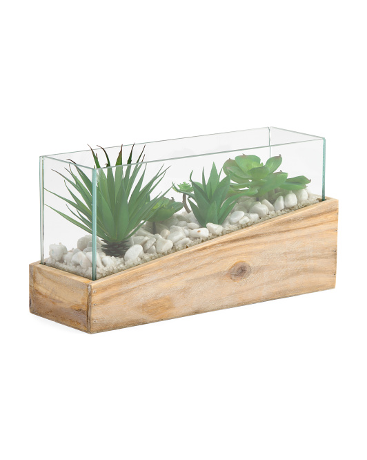Glass Angled Wood Succulent Box