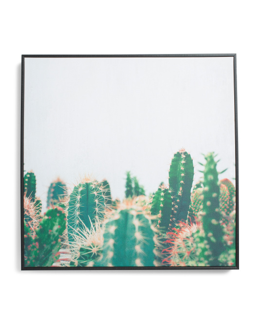 20x20 Cactus Family Square Wall Art