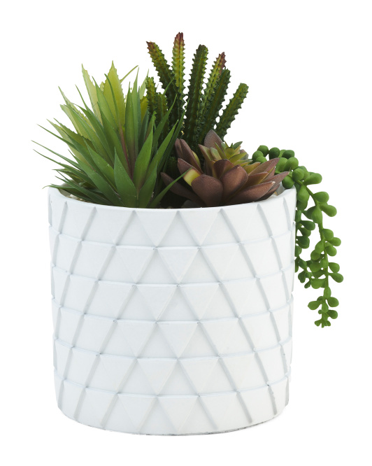 Assorted Faux Succulents In Diamond Pot