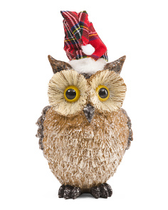 Large Owl With Christmas Hat