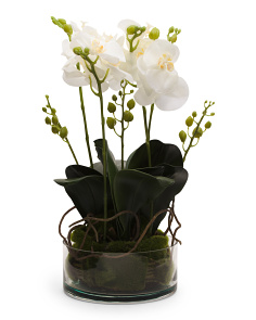 Faux Orchid With Moss In Glass Vase