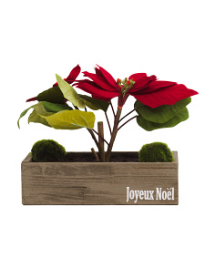 9in Poinsettia In Wood Box