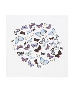 16x16 Papillion Bleu Wall Art