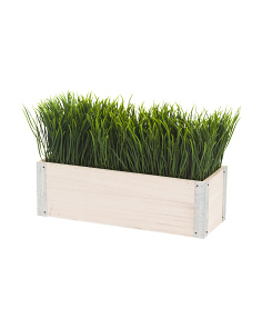 Grass In Ledge Planter