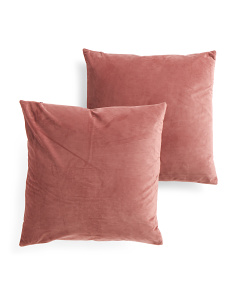 20x20 2 Pack Velvet Pillows