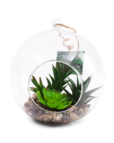 Faux Succulents In Hanging Glass Globe