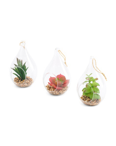 Set Of 3 Faux Succulent Hanging Globes