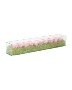 Dried Roses And Preserved Moss In Glass Box