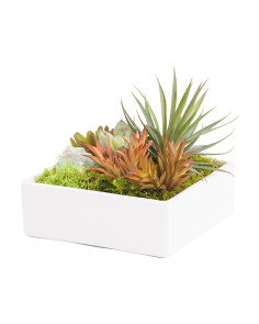 Succulent Garden With Green Calcite
