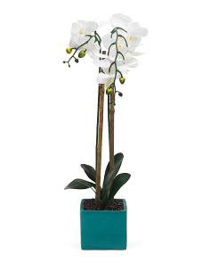 Faux Orchid In Color Block Pot