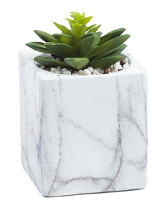 Faux Succulent In Faux Marble Pot