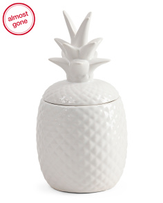 Ceramic Pineapple Canister