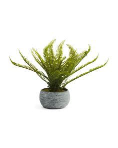 16in Faux Fern In Cement Pot