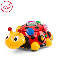 Funtime Activity Ladybug