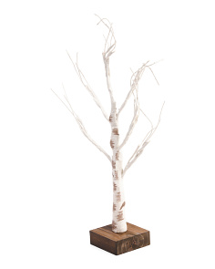 24in LED Birch Tree