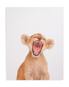 Kids 24x30 Lion Cub Canvas Wall Art