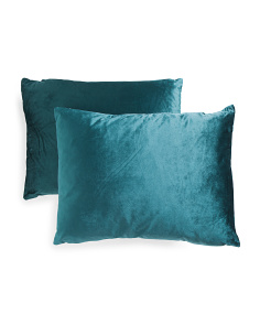 18x24 2pk Velvet Pillows