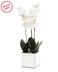 22in Faux Orchid In Mirror Pot