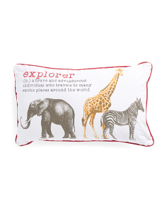 Kids 14x24 Explorer Definition Pillow