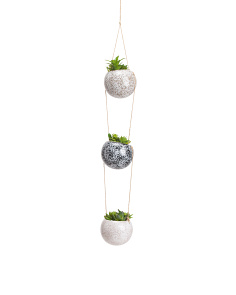 Set Of 3 Succulents In Hanging Pots