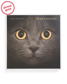 Life And Love Of Cats Coffee Table Book