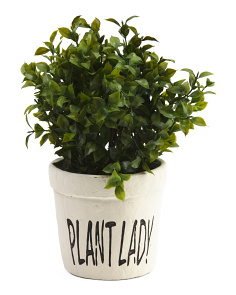 13in Faux Tea Olive In Ceramic Planter