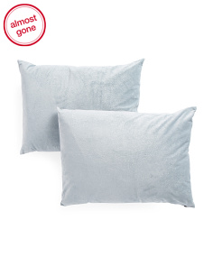 18x24 Set Of 2 Velvet Pillow