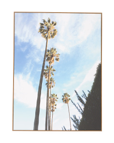 30x40 Tall Palms Framed Wall Art